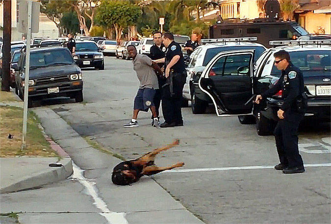 US police kill 25 dogs every day
