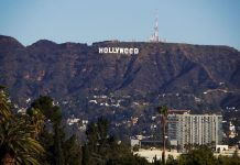 Hollyweed Sign Yazisi